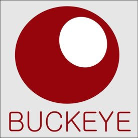 Buckeye English is looking for teachers to join our team in Dnipro, Ukraine!