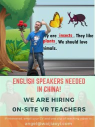 Hiring On-site VR Teachers to work in China!