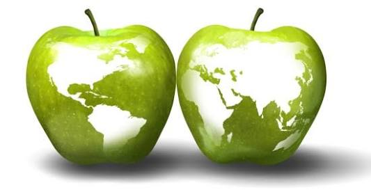Green Apple Agencies for English Teachers